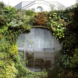 dr. of botany in paris, patrick blanc is the originator of the vertical garden. his english site is finally up (mostly), and the work on it is amazing. (this photo does not do it justice.)