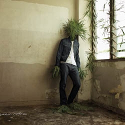 Eco Jeans 100% organic cotton. The last Levi's campaign, made by BBH in SIngapore.