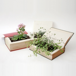 Honbachi (lit. Book pot) by TOKYO PISTOL! The greenest afterlife for books. Used book turned flowerpot! Great idea!