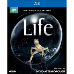 Finally ~ LIFE! The BBC David Attenborough version is available on BluRay on June 1st! Another must own to go beside Planet Earth in your collection...