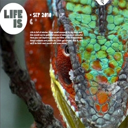 US viewers can enjoy a great new BBC site Life Is created by The Brooklyn Brothers and Fantasy Interactive.
