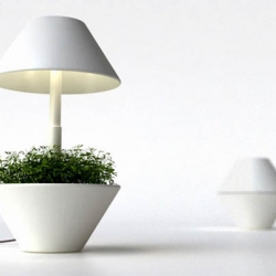 lightpot, by studio shulab is a small pot for growing plants indoors and works with the use of LED lighting
