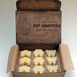 UK artist Linda Hubbard's 'Fat Invaders' made of real beef fat is just one of her many propaganda sculptures.