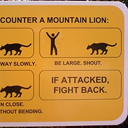 How to fight a mountain lion  and other funny signs to make sure you get along with nature.