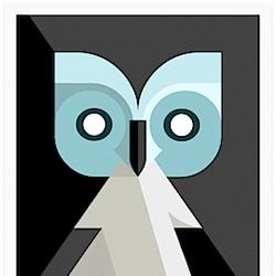 Beautiful Lumadessa Owl prints by Josh Brill.