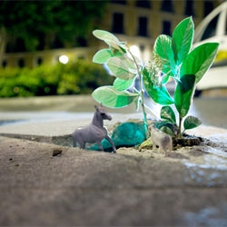 Flora and Fauna preserved. Micro-ecosystems by Luzin hit the streets of Barcelona.