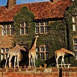 Wish i was here ~ a peek into Giraffe Manor in Nairobi!