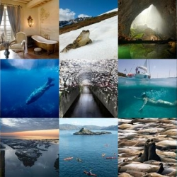 So much gorgeous travel inspiration over at NotVentures this week! Where will you be heading? Underwater in the Galapagos? A scenic drive through Colorado? Or perhaps something a bit more extreme?