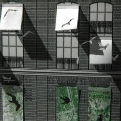 Con los ojos abiertos, the Petra Blaisse's exhibition at La Casa Encendida of Madrid.