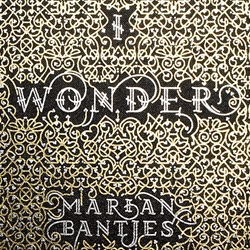 "Marian Bantjes designs a gorgeous new book, ""I Wonder,"" which is filled with all new illustrations and the meticulous detail one comes to expect from the master designer and lettering artist."