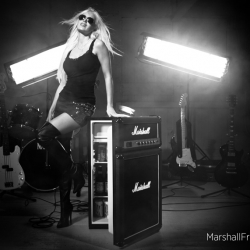 Marshall Fridge is as cool as rock'n' roll.