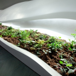 Artist and Landscape designer Paula Hayes expands upon the classic terrarium with these SciFi indoor garden installations, currently on show at MoMA.