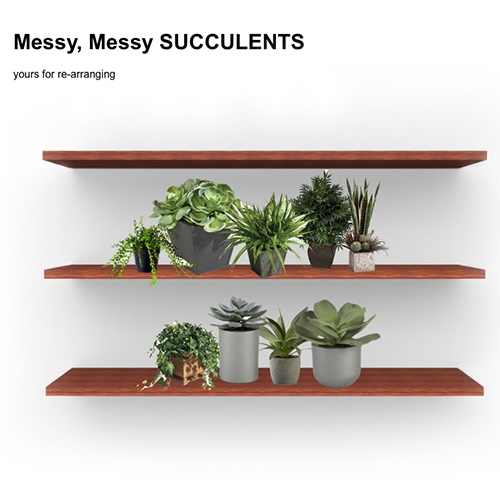 Messy, Messy Succulents: yours for re-arranging. Amusing website by Elena Flores.