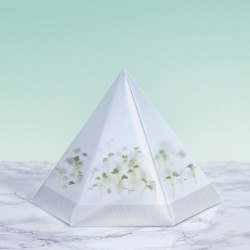 The Microgarden Kit - so anyone can grow their own microgreens at home, by Berlin-based indoor farming start up INFARM, and Swedish design studio Tomorrow Machine.