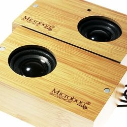 Say goodbye to plastic! These mini wooden speakers from China's Microbon let you play your portable media player in style.