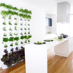 Minigarden, a contemporary, modular vertical gardening system.