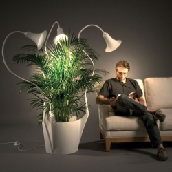 The Spotlights lamp accompanies your plant during its growth. Designed by Caroline Schilling.