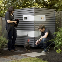 Dwell shares a slideshow of Mitchell Snyder and Shelley Martin's Portland hen coop with a green roof!