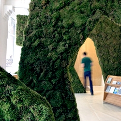 'Moss Your City' installation by Pushak. Series of moss-covered arches in the entry and gallery space of The Architecture Foundation's London headquarters.