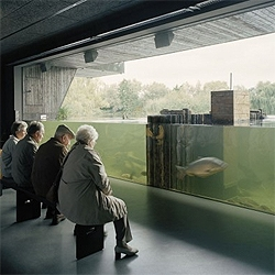The Muritzeum by Wingardh is a black building inserted into the landscape, with a freshwater aquarium, multimedia exhibits, restaurant and a shop. I love how the aquarium is presented to the visitors.