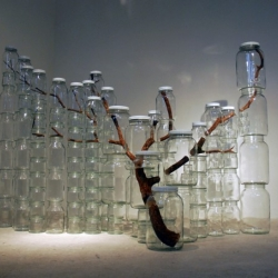 Impressive installations by Naoko Ito from Tokyo.