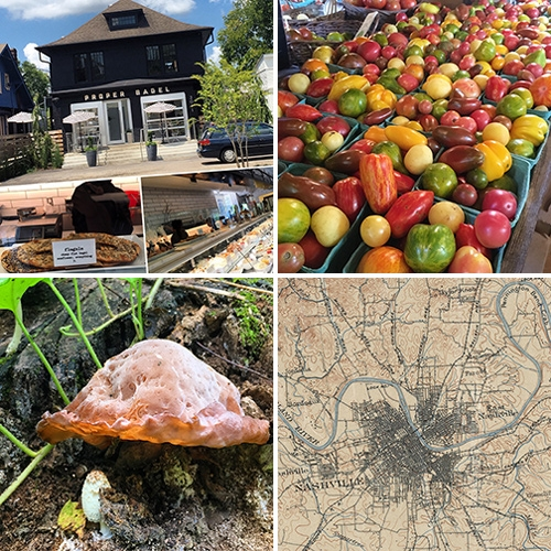 Inspiration: Nashville + Project House (IV) From flagels at Proper Bagel, to stunning mini heirloom tomatoes, shopping, nature, vintage maps, mushrooms, and more surprising inspiration.