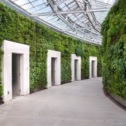 The largest green wall in North America will be unveiled tomorrow in Vancouver, BC.