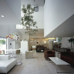 KRE house in Shirokane, Tokyo by Takuya Tsuchida. With a 9 car garage, and a tree in the house.