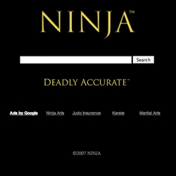ninja.com: deadly accurate.  google based search page... and email addies at ninja.net