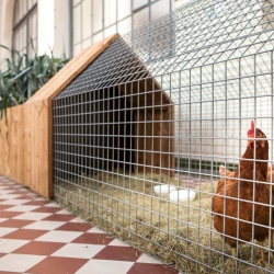Tiny farming: Daily Needs Modular Chicken Coop & Garden by Studio Segers provides all the components you need to assemble housing for chickens, raised beds for vegetables, composting bin, and tool shed in a configuration of your choice.
