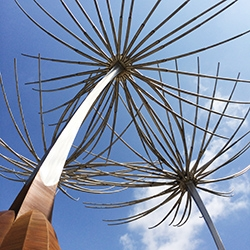 Installation video of three 25-foot tall dandelion seeds in stainless steel and corten, a sculpture celebrating a wish of South Central Los Angeles coming true.