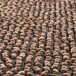 Spencer Tunick breaks his previous record by photographing 18,000 nude people in one location.