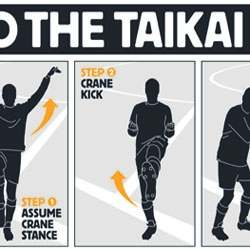 UK betting company Betfair has launched the world's first commercial goal celebration to advertise its new online game TaiKai.  The first footballer to DO THE TAIKAI will receive an instant £10,000 goal bonus