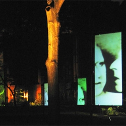 David Bowie curated this video art installation created by Alpay Kasal of blog.LitStudios.com as part of the Highline Festival in New York City