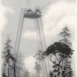 i know brooks salzwedel gets plenty of love here on notcot, but... wow!  there's an opening of new gallery work at tinlark in los angeles this saturday night (1/19).  even if you can't make it, check out the preview.  simply amazing.
