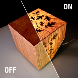 Cub lamp by a french designer Julian Robin. It's not only a block of oak wood. It can becomes a light.