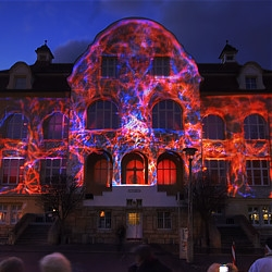 """Processes: Living Paintings"" is a 35 by 16 meter full facade projection with a corresponding light choreography, ambient music and synced sound effects for the 100th anniversary of the Phyletic Museum in Germany founded by Ernst Haeckel."