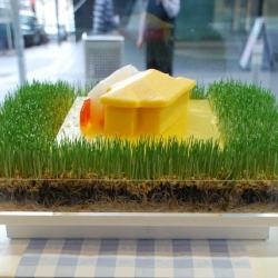 Architects and foodies create edible building models for Melbourne's State of Design festival.
