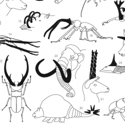 another fantastic graphic from today's NYT feature on animal armaments.