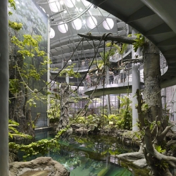 the nytimes slideshow of the new california academy of sciences.