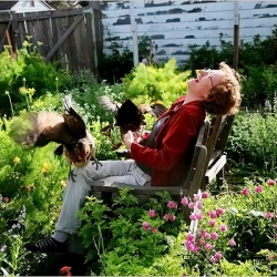 Amy Stewart's maintains a poison garden in her home in Eureka, CA.  It includes species like foxglove, opium poppies and castor beans.