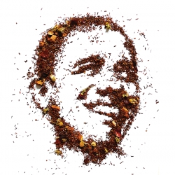 Obama and McCain Tea blends. Taking orders until election day, ships inauguration week.