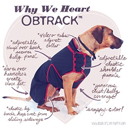 Obtrack ~ stunning review over at Oscar Ate My Muffin of this Swedish canine coat company.