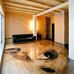 Spanish architect Manuel Ocaña refurbished an old apartment using OSB panels, for his mother in law. The floor of the apartment has an amazing hand crafted wood work with her portrait.