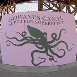 Tonky Octopus in brooklyn!