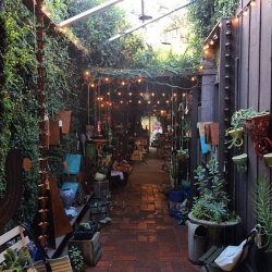 Ojai, CA - a peek into Summer Camp in an old gas station, FIG down a vine covered path, and picnic store, Tipple & Ramble! My favorite finds while popping into Ojai yesterday!