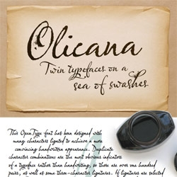 Olicana Rough ~ a new VEER typeface i've fallen for