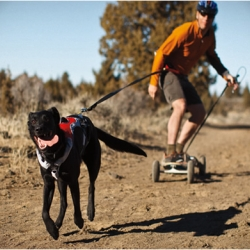 The Omnijore Joring System by Ruff Wear is ideal for any dog-pulling excursion such as skijoring, mountainboard-joring, skatejoring, bikejoring, or canicross.