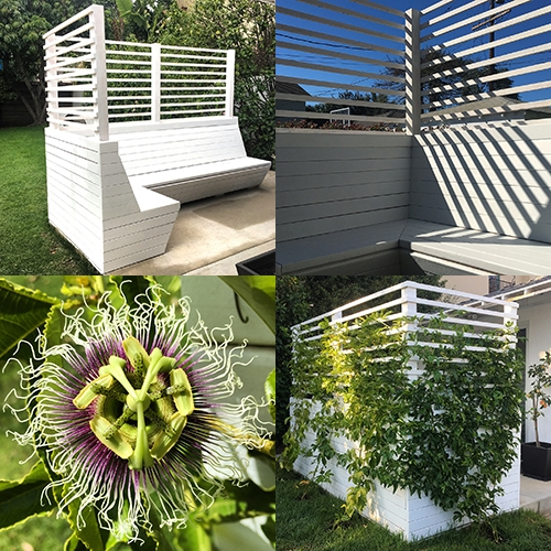NOTCOT Passiflora Experiment. Our trellis/L-bench designed for passion fruit vines to cover the exterior, while creating a comfortable, lush oasis inside! See the process from start to finish!