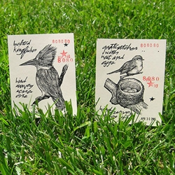 """Three Potato Four has adorable """"Bird Survey"""" prints by Matt Cipov ~ and the nest one is available in larger poster form as well!"""